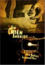 Un chien andalou (1929) a.k.a An Andalusian Dog