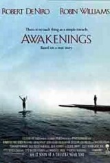 Awakenings (1990) moved from 239. to 223.